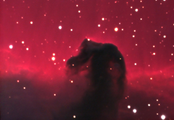 Blog 5: The Beautiful Horsehead