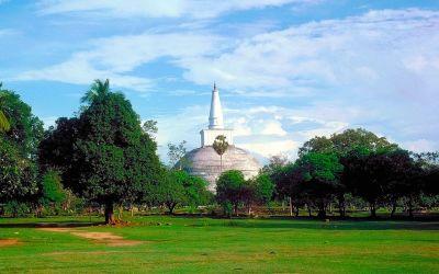 Colombo - Anuradhapura