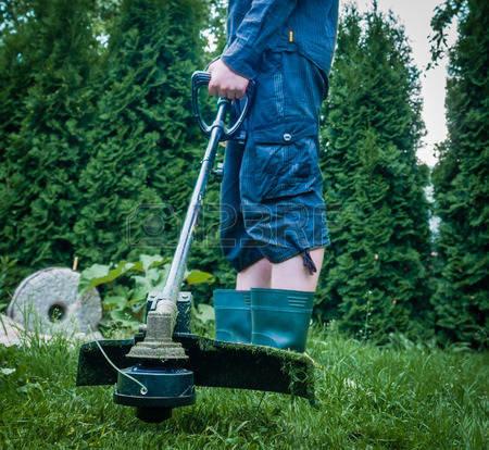 Lawn Trimmer Repair