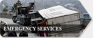Emergence Service