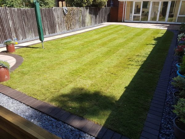 Natural and Artificial Lawns