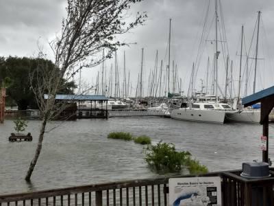 Hurricane Irma:  Evacuee Perspective