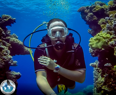 Scuba Diving, Hurghada, Red Sea, Egypt, Mahmoud El Taher