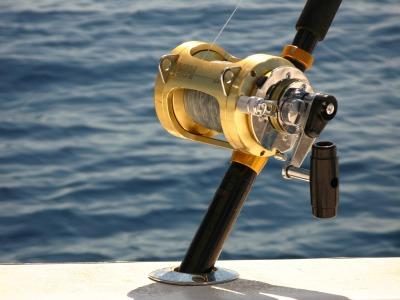 Fishing/Halibut / Salmon / Combo
