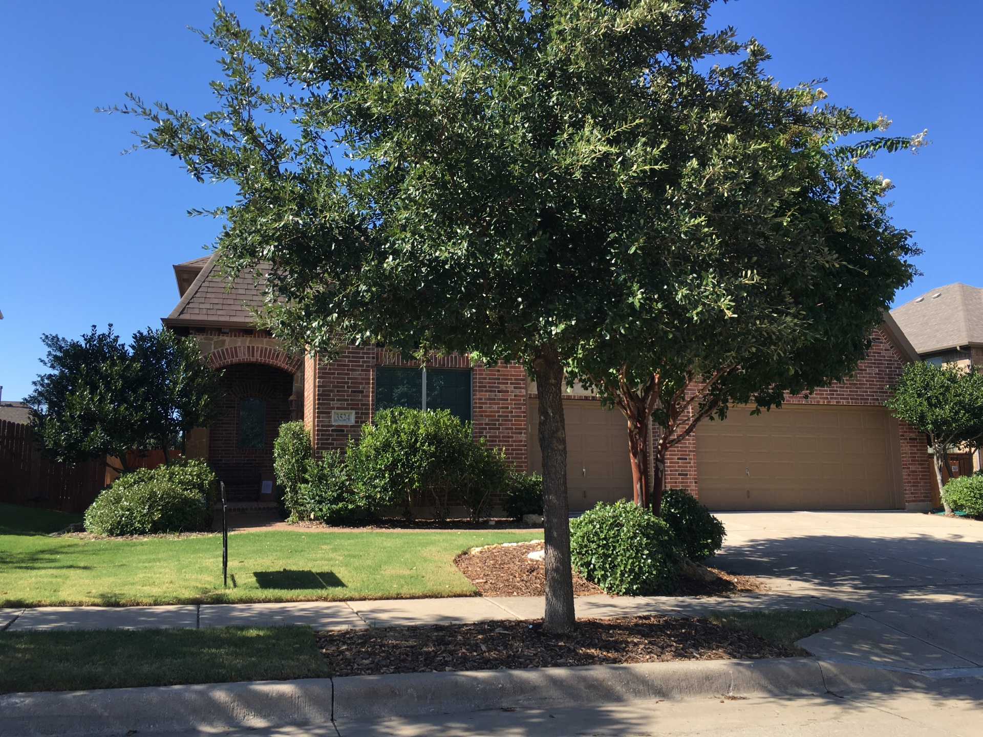Mathews Lawn Care Arlington, Texas