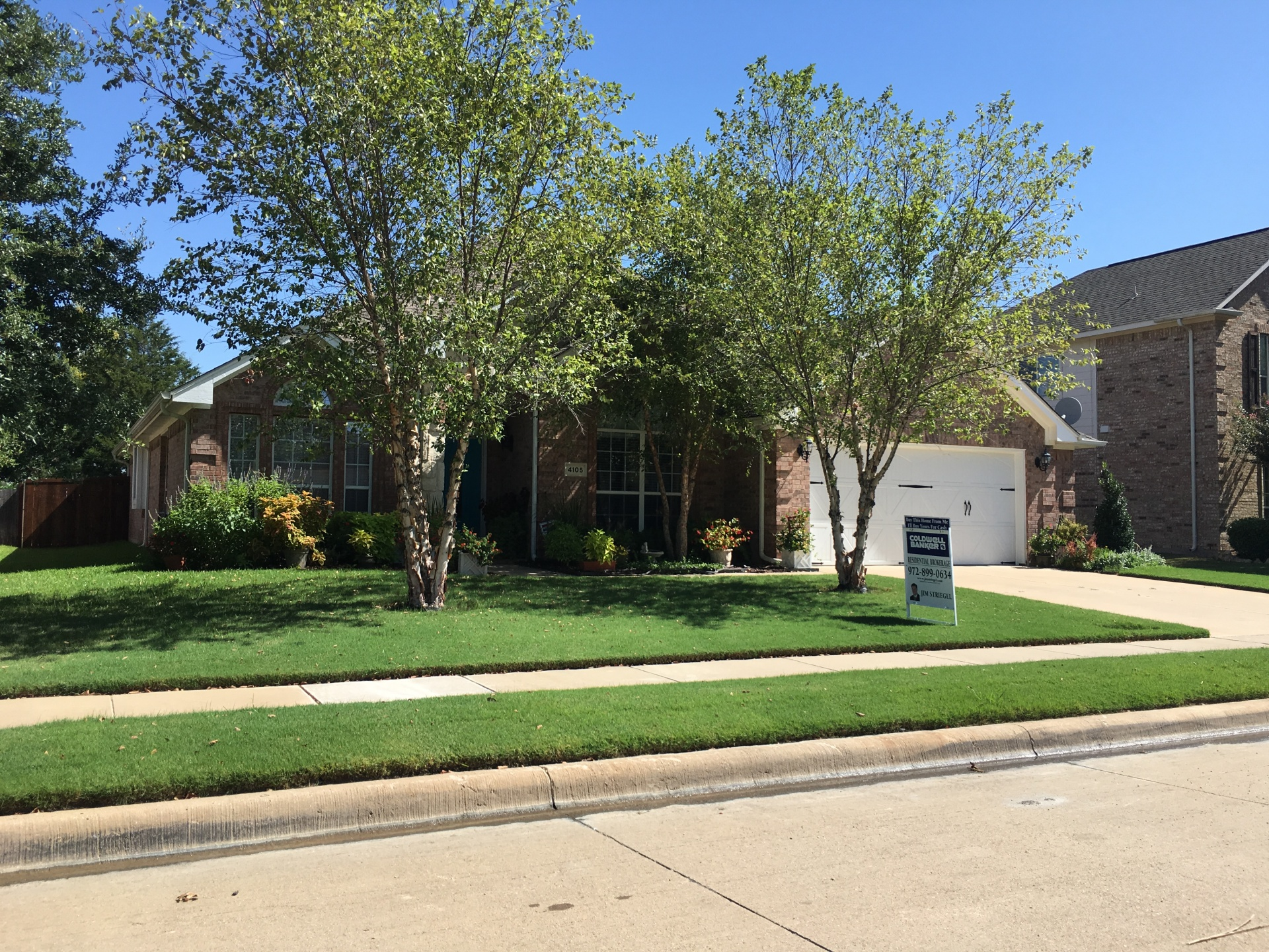 Mathews Lawn Care Arlington, Texas