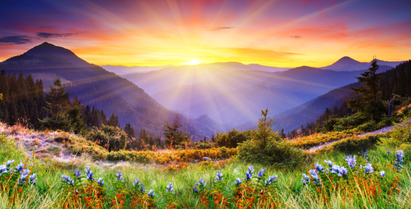 Unlocking Your True Magnificence: Igniting the Light Within