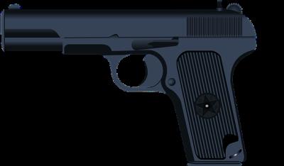 VETS PTSD GUNS