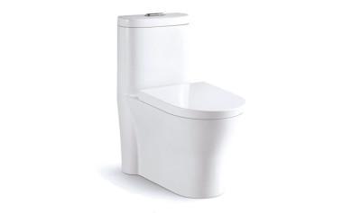 Modern One Piece Toilet ABSBSN-832