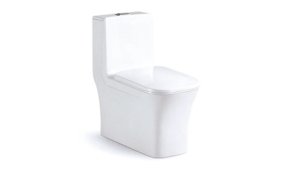 Modern One Piece Toilet ABSBSN-835