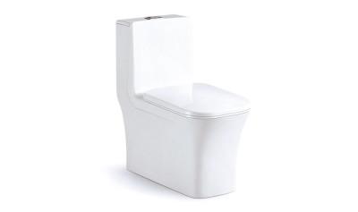 Modern One Piece Toilet ABSBSN-835