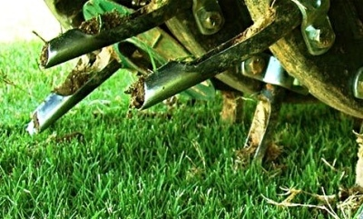 Aerating/Verticutting