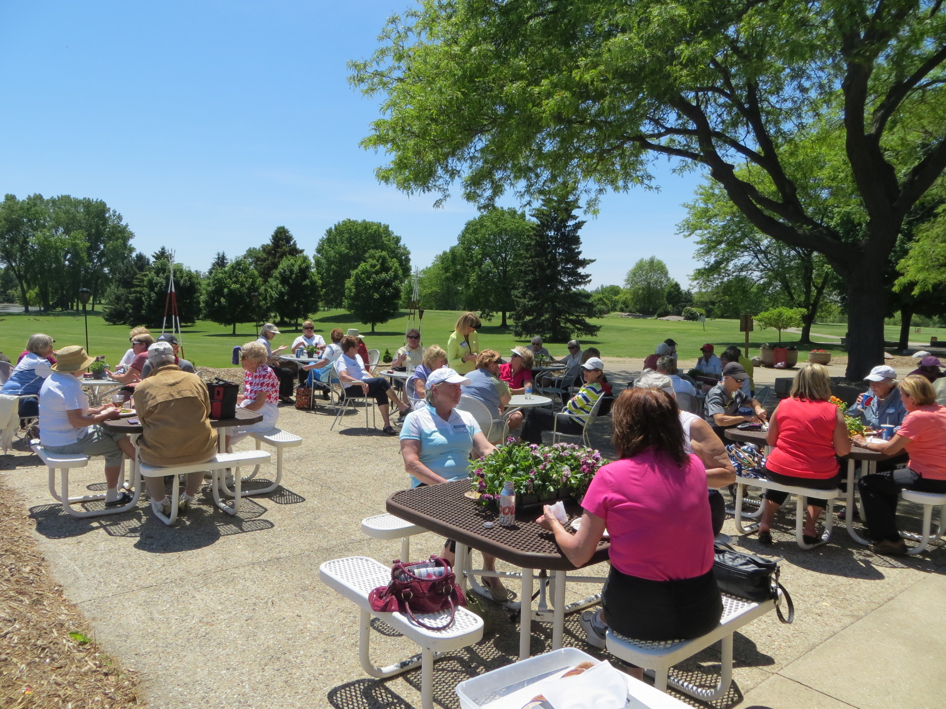 WMGA, women's golf, leagues, Madison, WI