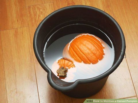 How to preserve your pumpkin to make it last even longer!