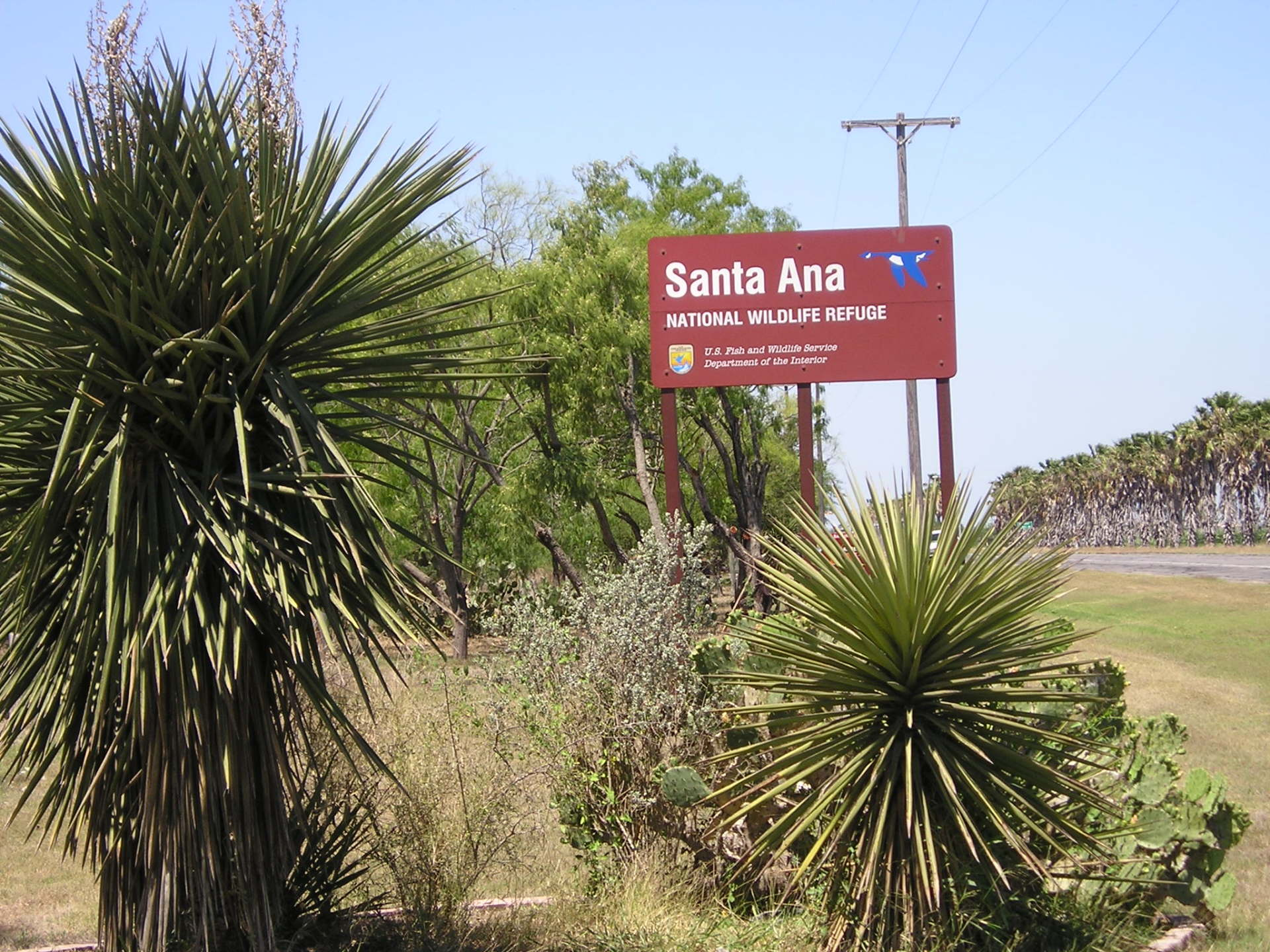 Take Action to Protect Santa Ana National Wildlife Refuge in Texas