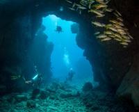 Underwater Arches