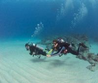 Safe beginner diving from protected shorelines