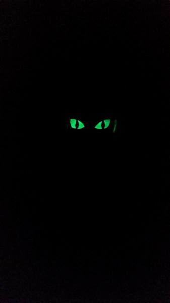 Spooky Eyes