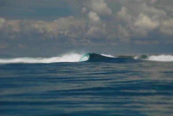 Fiji Empty