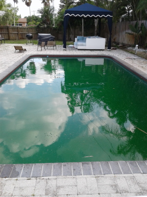 Green Pool better call Swimming Pool Man