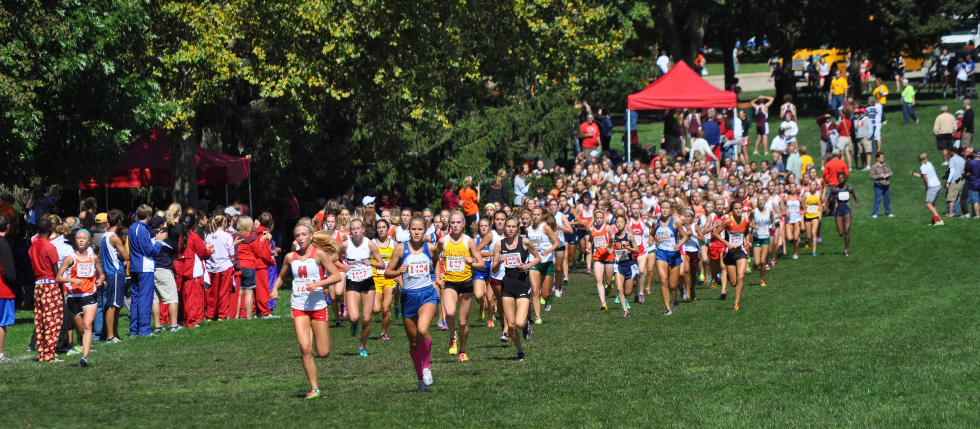 The Week Ahead in Illinois High School Cross Country