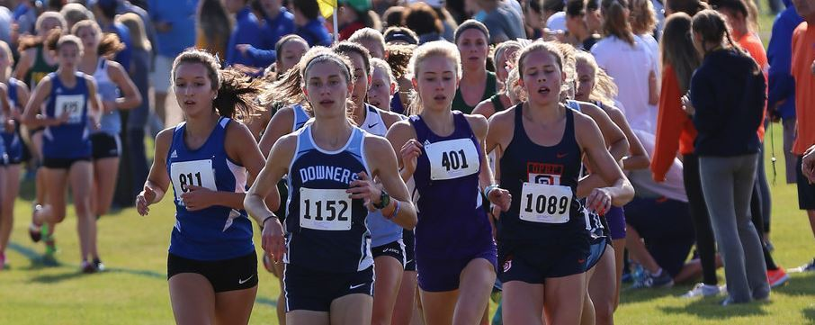 Where IL HS XC teams will be heading this weekend