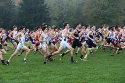 IHSA State XC Championships - Boys Recaps
