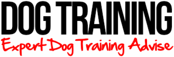 Dog Obedience Classes Shasta County