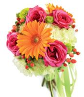 Gerber Daisy Florals