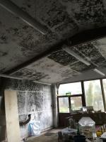 decorators for South Hams