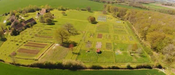 Un jardin potager permaculturel