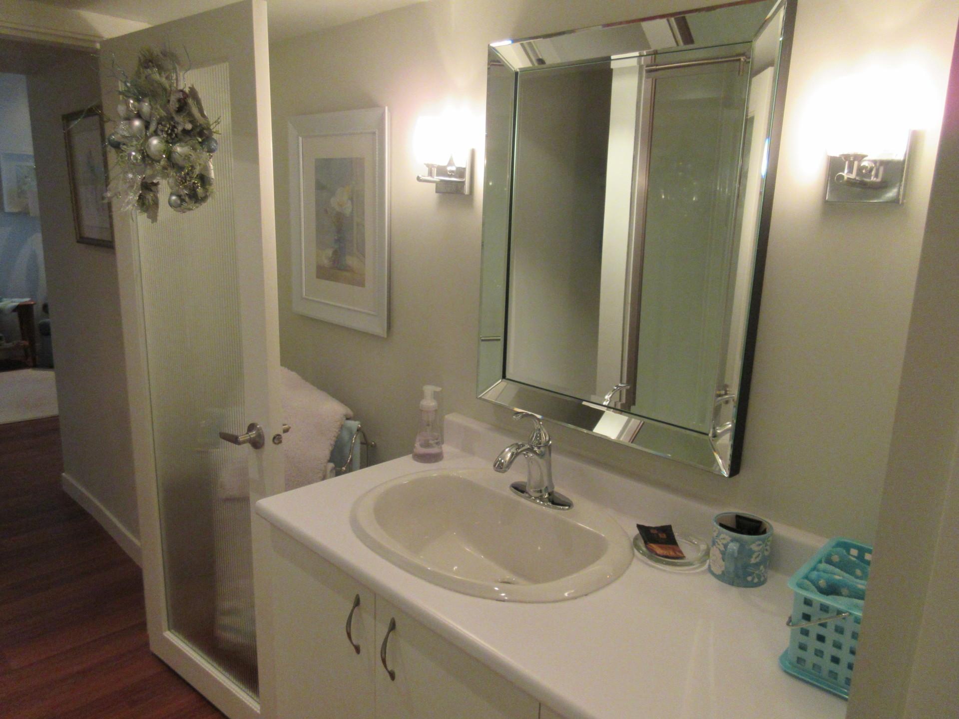 Modern Spa-like Bathroom