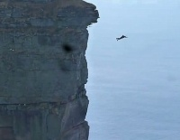 "alt=""Diving off Cliff"""