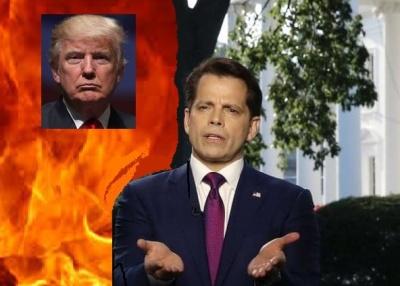 "alt=""Trump The White Knight"""