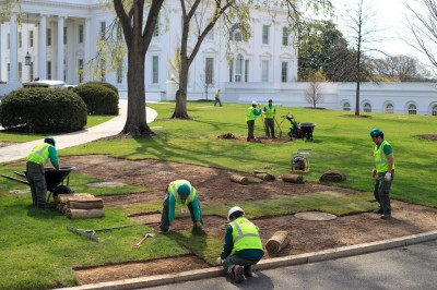 "alt=""Sinkhole forms on the White House lawn. Blame the swamp. Really."""