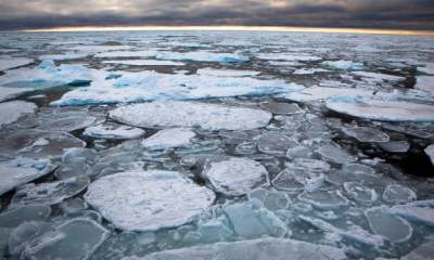 "alt:""Arctic's strongest sea ice breaks up for first time on record"""