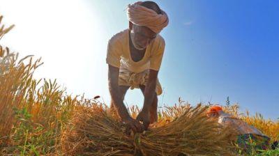 "alt=""India election 2019: Should farmers' debts be written off?"""