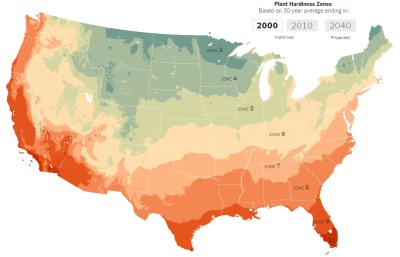 """alt=""""How Climate Change May Affect the Plants in Your Yard"""""""