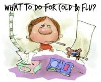 Cold & Flu [Viruses]