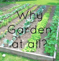 Why Garden at all?