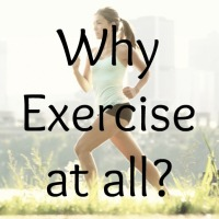 Why Exercise at all?