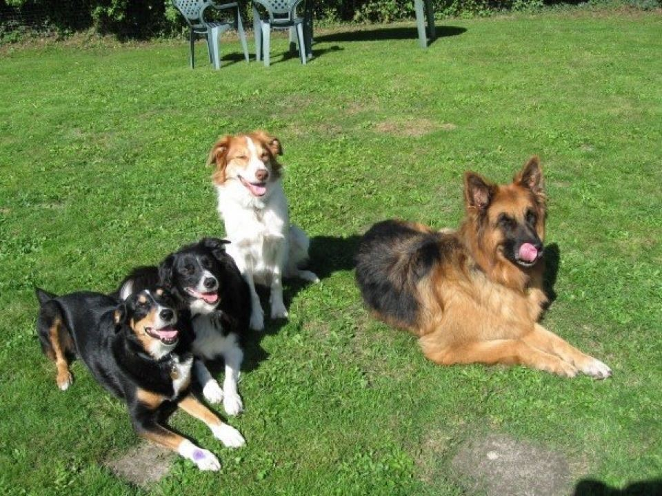 Jazz, Meg, Jack & Bryn