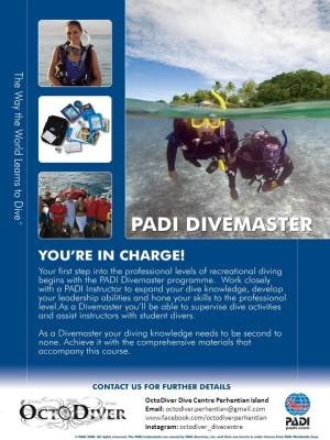 octo diver perhentian island malaysia underwater beach scuba diving holiday vacation backpakers kuala besut getting here pulau terengganu divesite map open water padi advance open water dive master efr rescue diver octodiver
