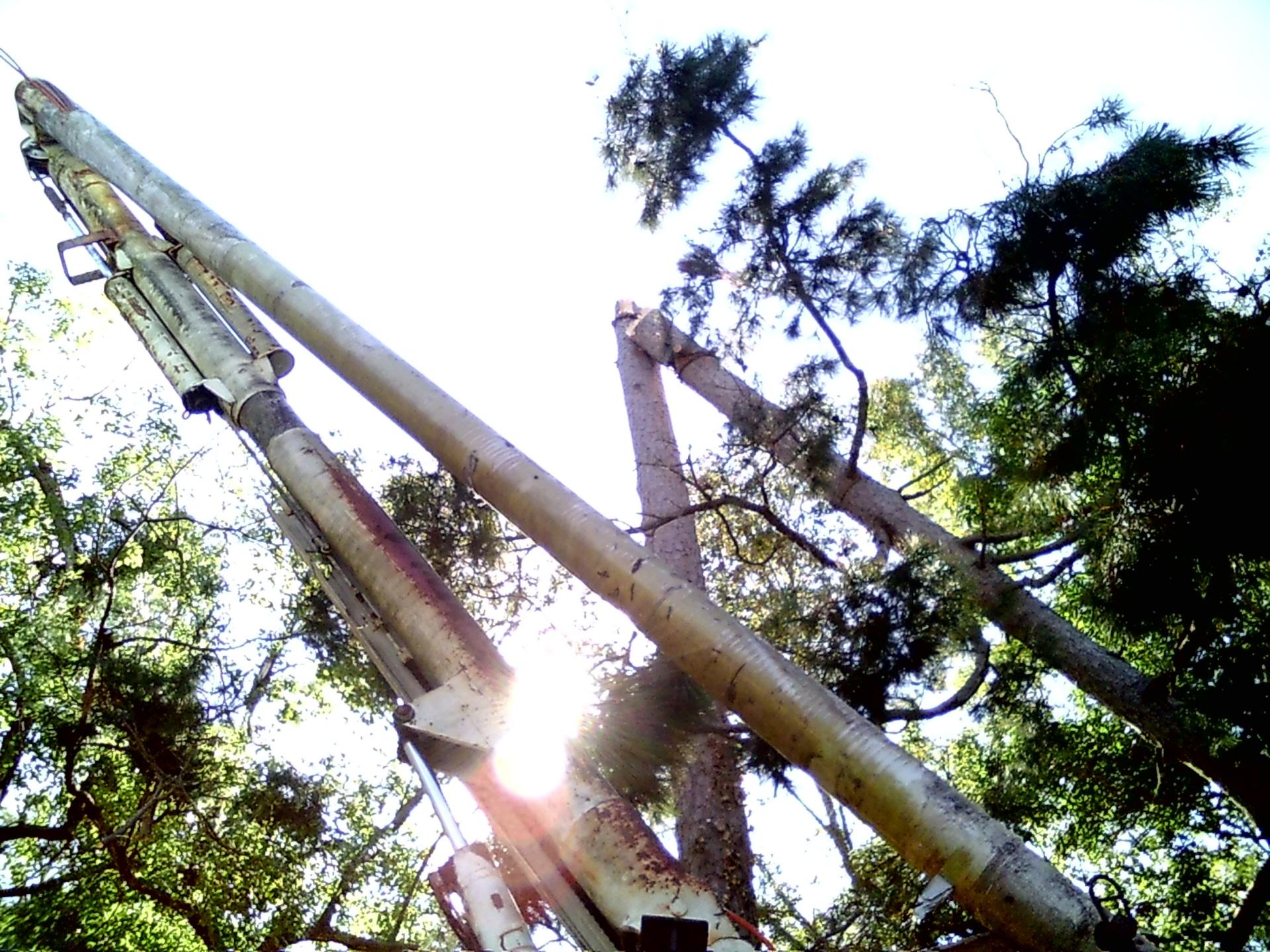 65 foot boom