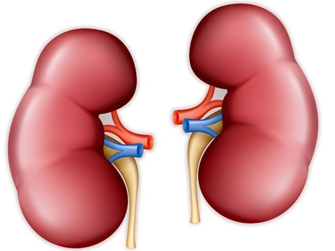 Kidney signs and symptoms