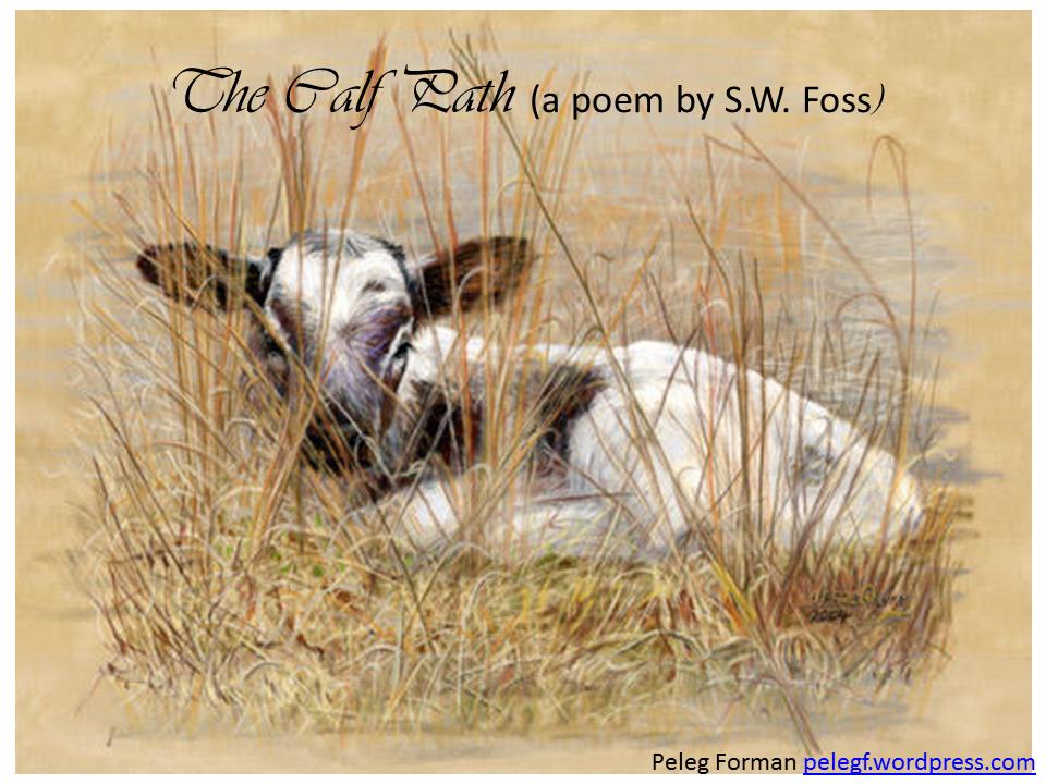 The Calf Path (SW Foss)