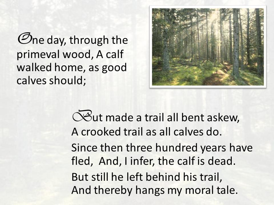 The Calf Path (SW Foss) (2)