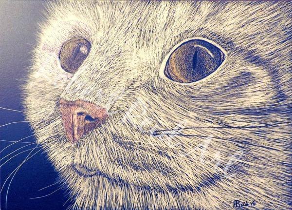 """""""Cat"""" - SOLD"""