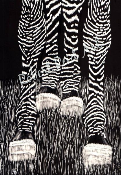 """""""Zebra Socks"""" - FOR SALE"""