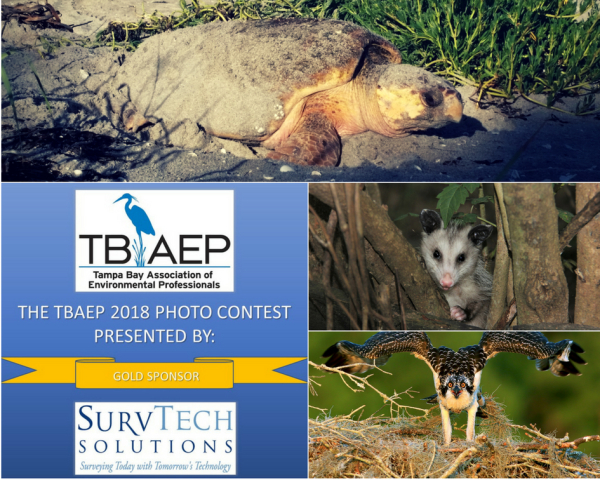 2018 Photo Contest Now Open!